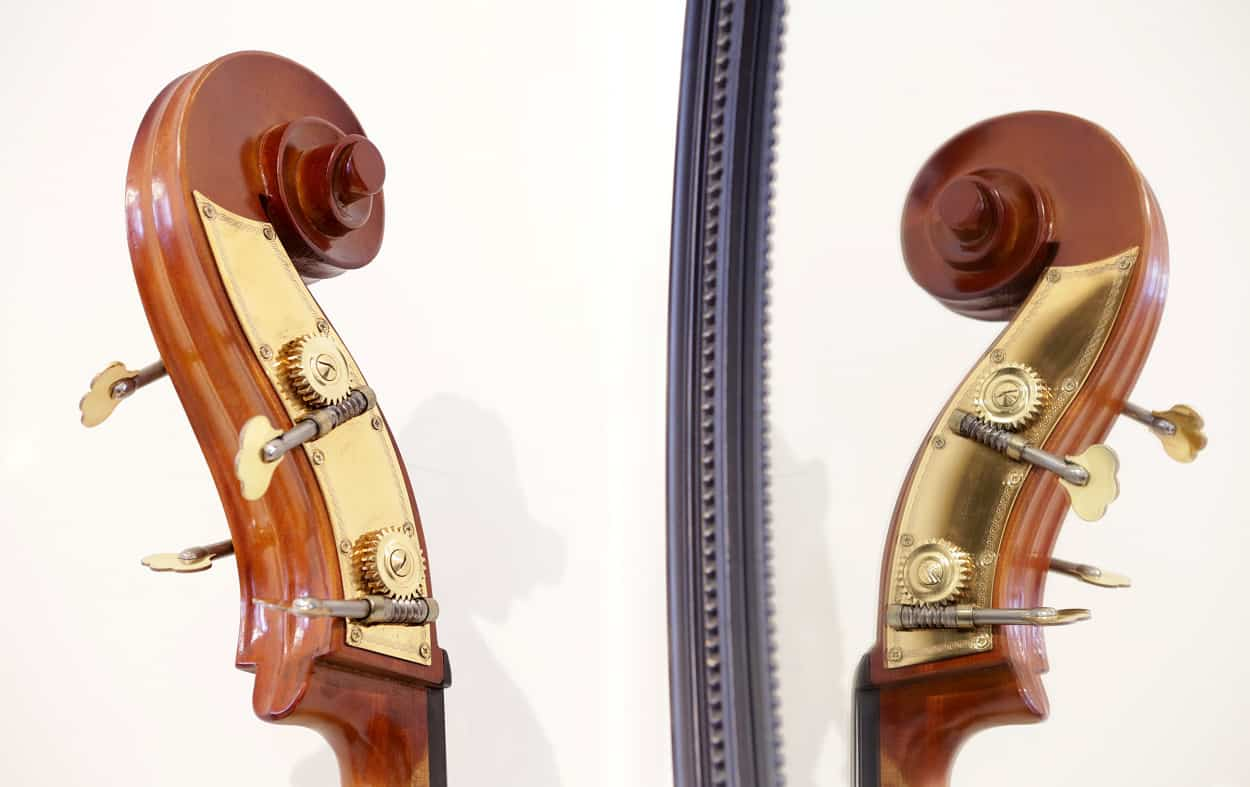 IMGL9036 string bass 2 scroll