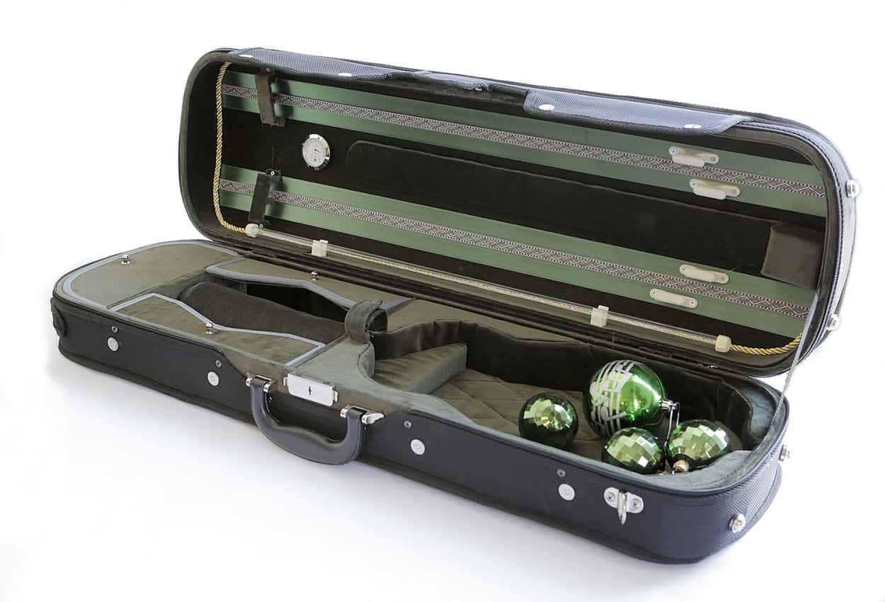 Violin Case green