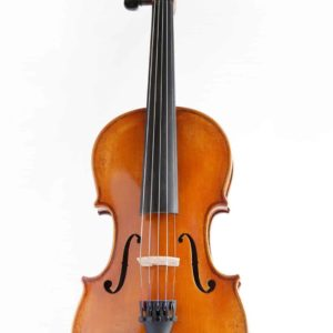 A Eastman 5 String Violin
