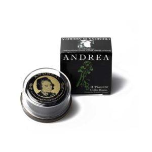 Andrea A Piacere Rosin