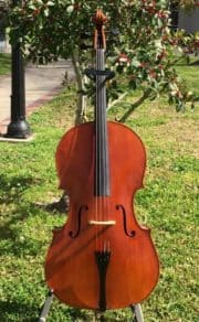 Calin Wultur Cello