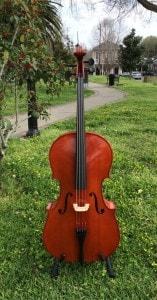 Yamaha Model AVC5 Cello