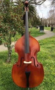 Baronne Upright Bass Outfit Model 110