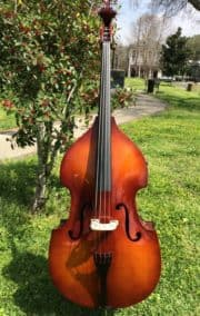 Core Academy A41 Upright Bass
