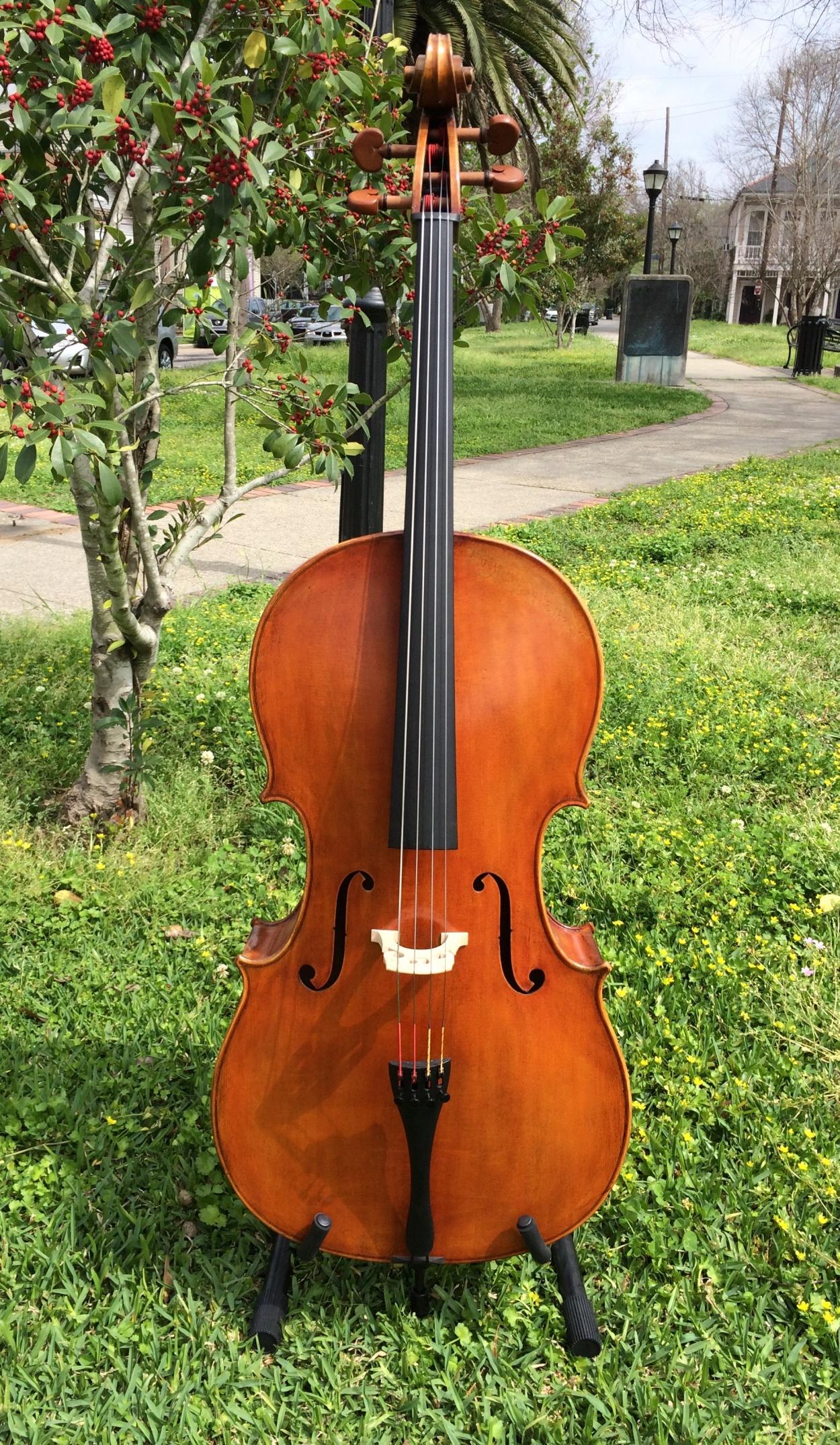Amber Strings Marco Bosio Cello