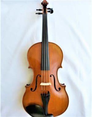 Calin Wultur Viola
