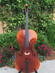 Nicolas Parola Model CP5 Cello